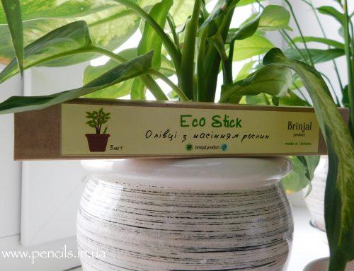 Эксперимент: садим растущие карандаши Brinjal